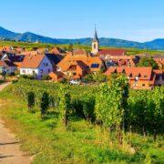 grands crus,vignoble de bordeaux,vignoble bordeaux - 6 lieux incontournables pour découvrir la Route des vins Alsace - 2021 - 2