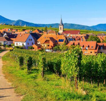 régions viticoles,france,champagne,bordeaux,bourgogne - 6 lieux incontournables pour découvrir la Route des vins Alsace - 2021 - 24