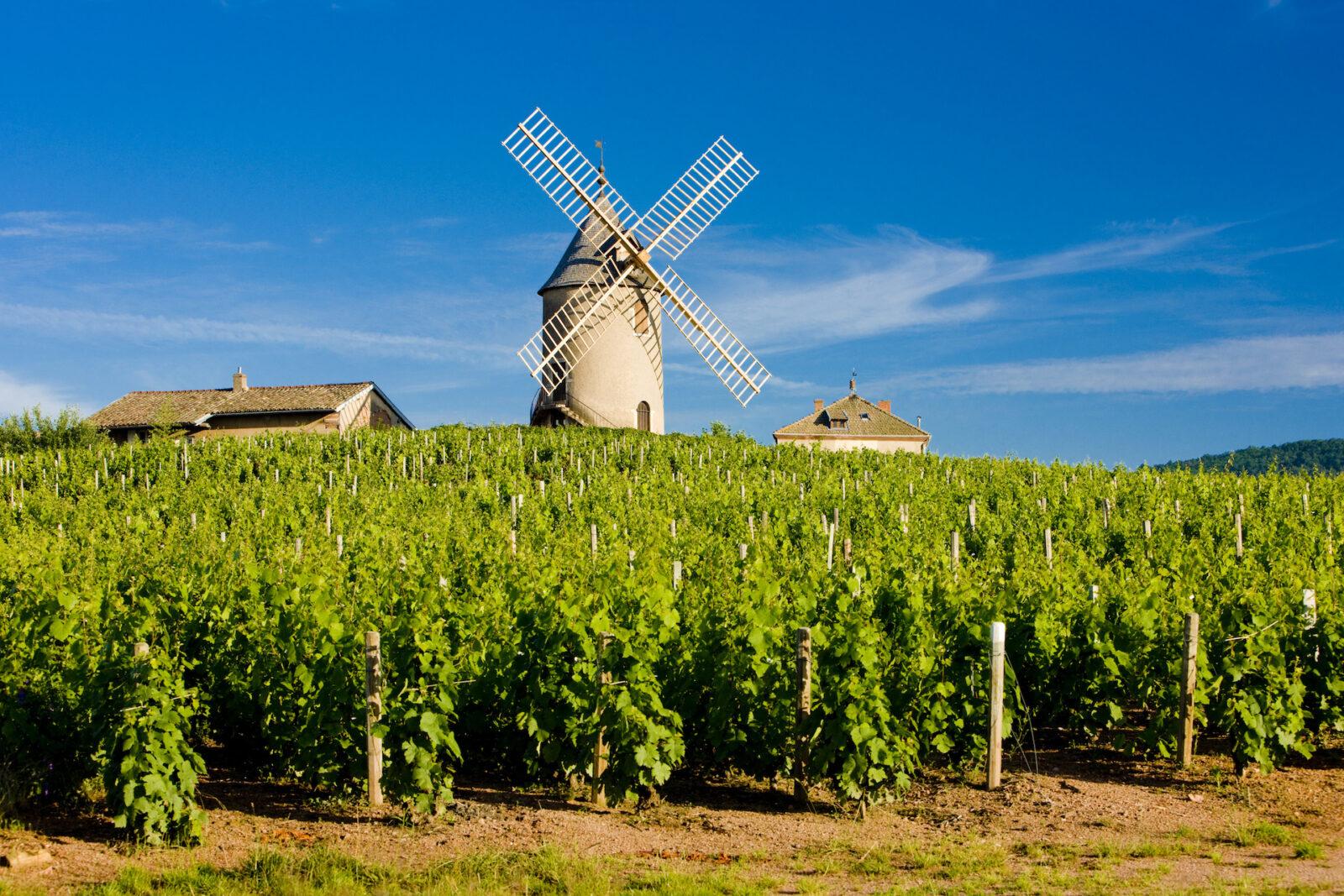 le beaujolais - Visiter le Beaujolais : les plus beaux villages et les meilleures activités - 2021 - 1