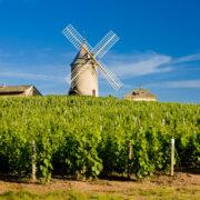 marché de noël de kaysersberg - Visiter le Beaujolais : les plus beaux villages et les meilleures activités - 2021 - 3