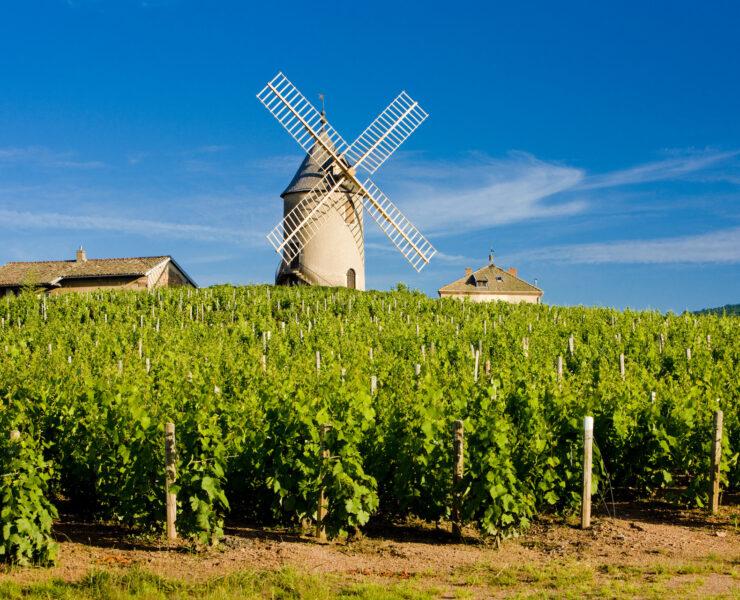 visiter aix-en-provence,aix-en-provence - Visiter le Beaujolais : les plus beaux villages et les meilleures activités - 2021 - 34