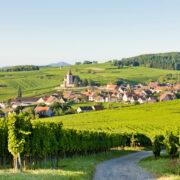 baux-de-provence - Route des vins d'Alsace : notre itinéraire idéal - 2021 - 6