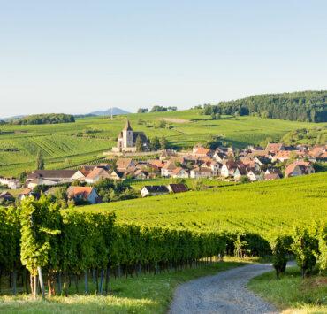 colmar,noël - Route des vins d'Alsace : notre itinéraire idéal - 2021 - 22