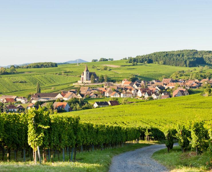 recette de vin chaud - Route des vins d'Alsace : notre itinéraire idéal - 2021 - 12