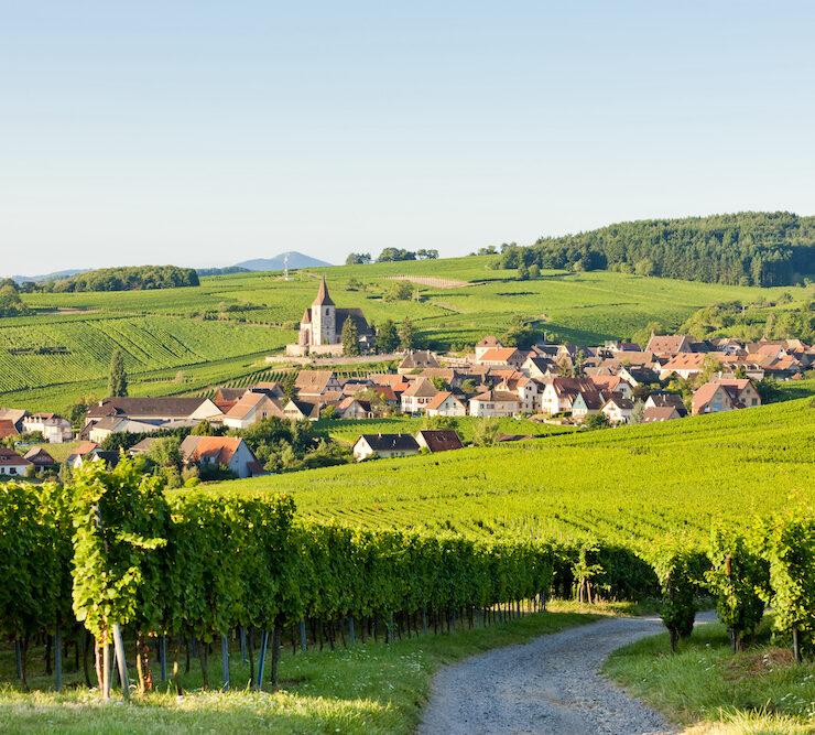 bordeaux,que faire à bordeaux le week end,week end,week end à bordeaux,vin - Route des vins d'Alsace : notre itinéraire idéal - 2021 - 12