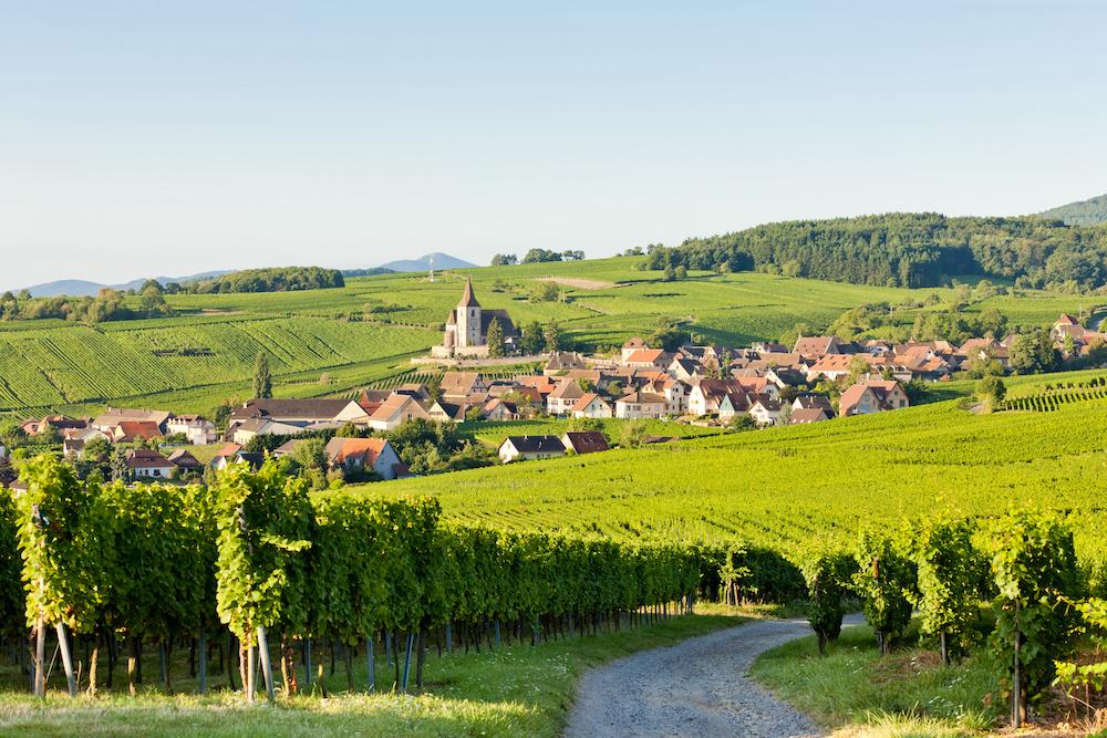 route des vins,alsace - Route des vins d'Alsace : notre itinéraire idéal - 2021 - 1