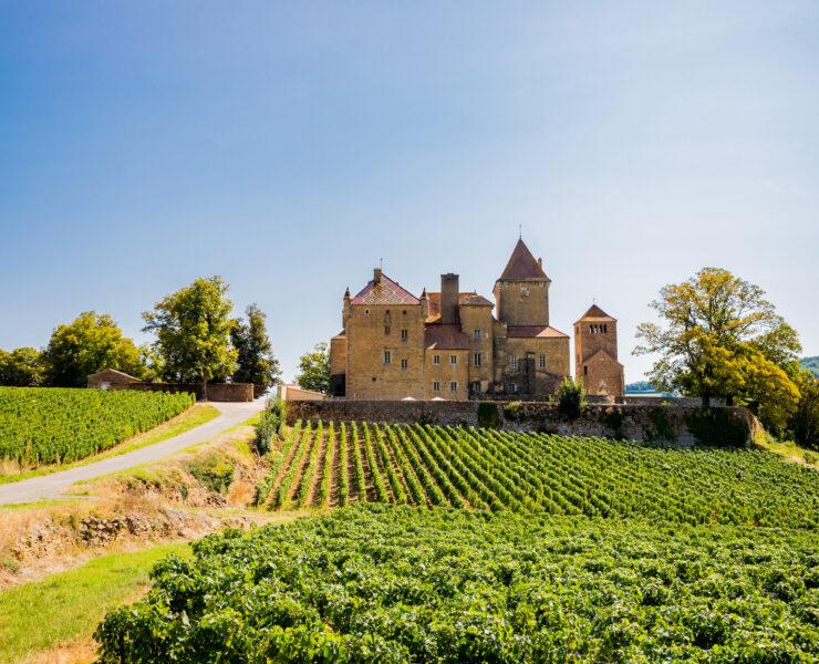 route des grands crus - Route des Grands Crus en Bourgogne : Présentation et idées d'activités sur votre circuit - 2021 - 42