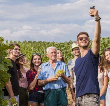 - Les trésors du tourisme viticole : les spécificités de chaque terroir - 2021 - 17