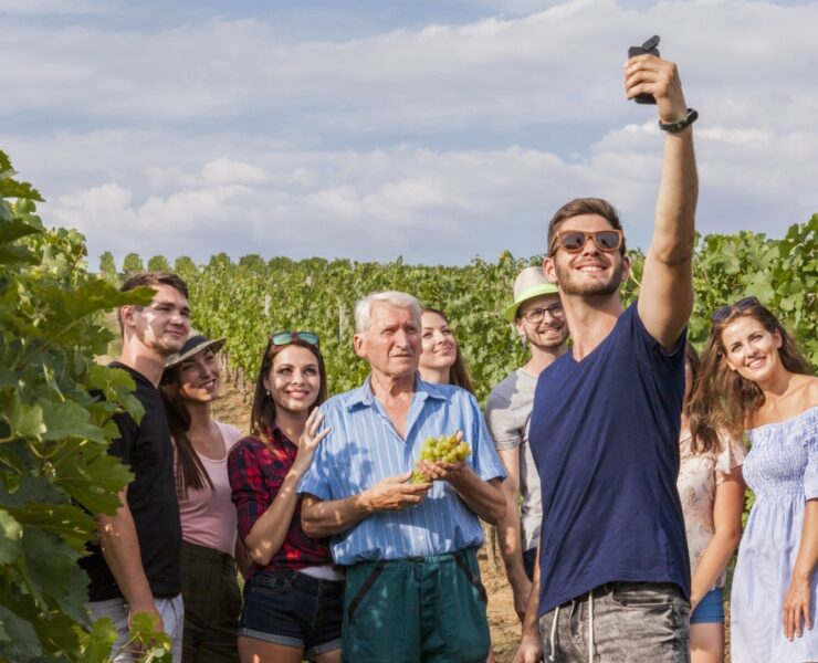 experience viticole, visite domaine viticole, dégustation de vin, experience oenologique - Les trésors du tourisme viticole : les spécificités de chaque terroir - 2021 - 3