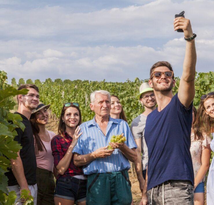 vente des hospices de beaune - Les trésors du tourisme viticole : les spécificités de chaque terroir - 2021 - 13
