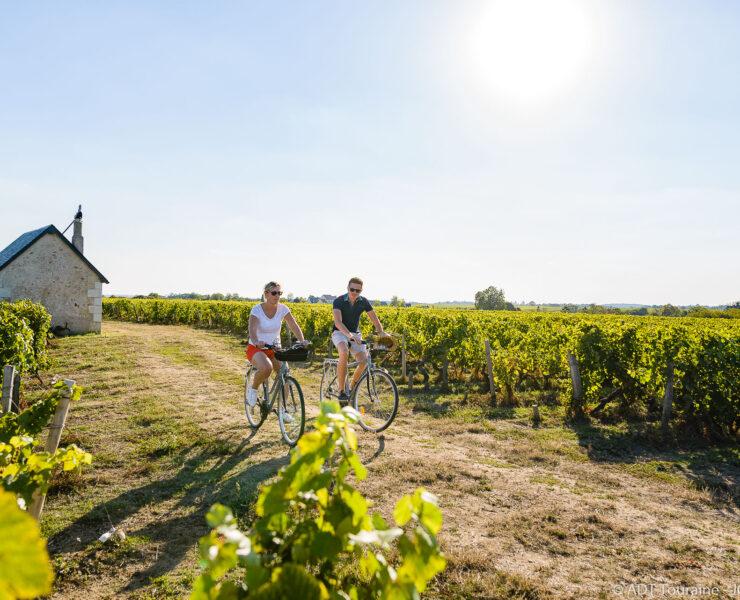 La route des vins de Loire vous fera découvrir d'incroyables paysages