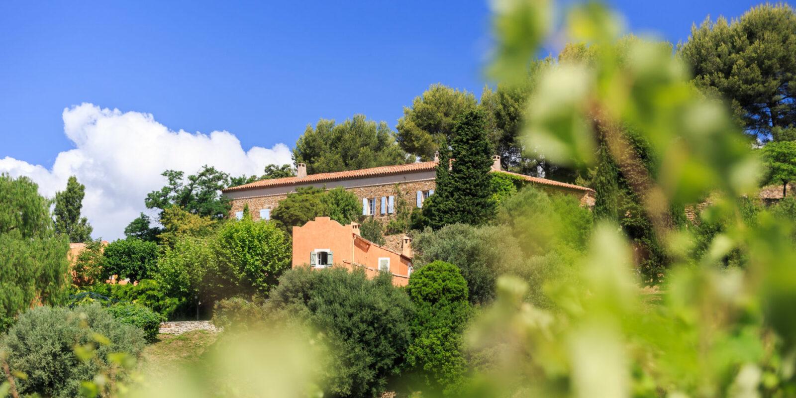 - Les domaines viticoles des stars - 2021 - 11