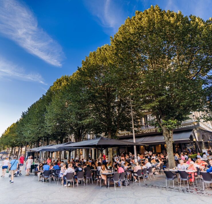 grands crus,vignoble de bordeaux,vignoble bordeaux - Que faire à Reims le week end ? - 2021 - 25